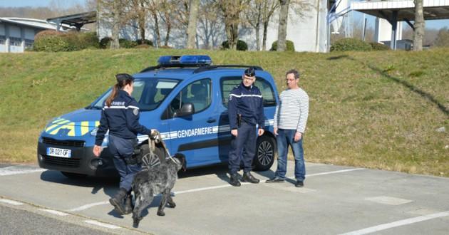 chien gendarmes