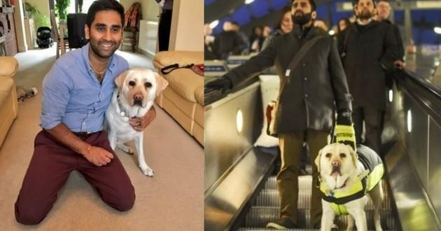 Kika chien guide d'aveugle