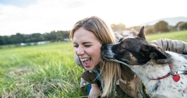 un chien lèche le visage de sa maîtresse