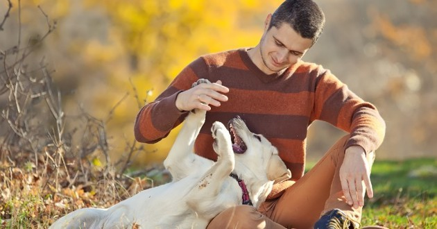 Un chien heureux avec son maître