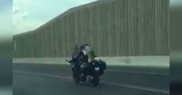 hysky sur une moto