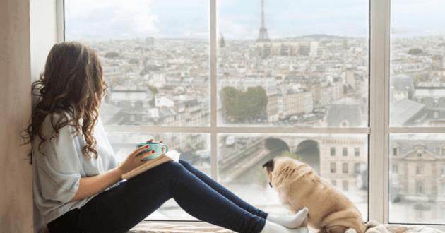 chien Paris