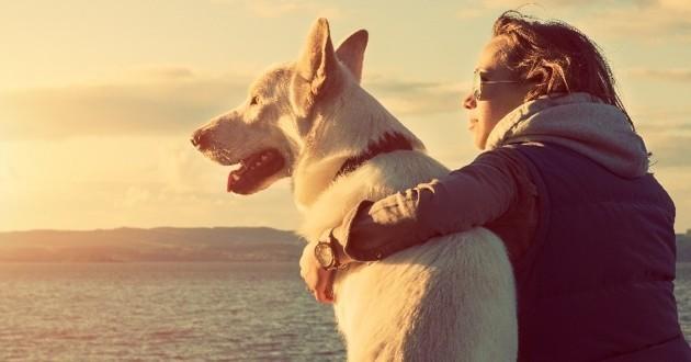 Vous avez un chien ? Voici votre profil psychologique, selon Facebook