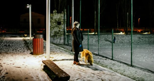 chien rue avec sa maîtresse