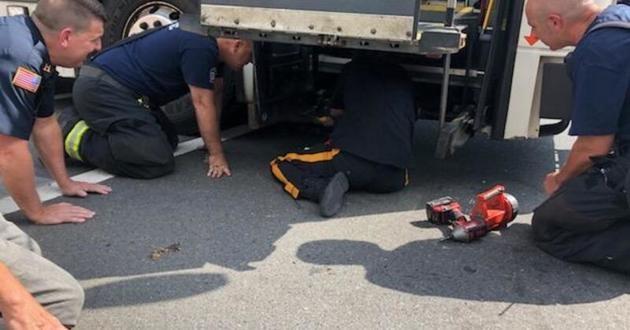 sauvetage d'un chien sous un bus