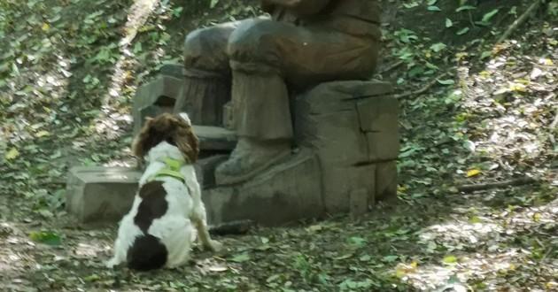 chien devant une statue