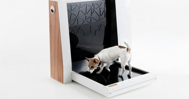 WC pour chien