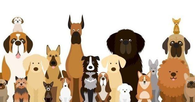 un dessin de chiens en rang
