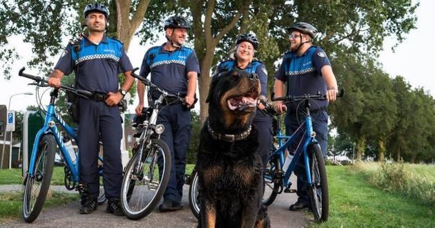 chien et policiers