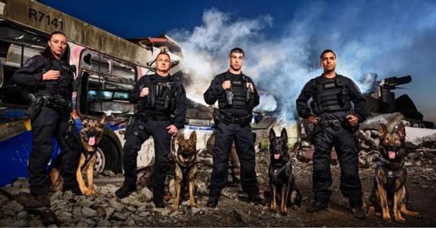 chiens policier de Vancouver