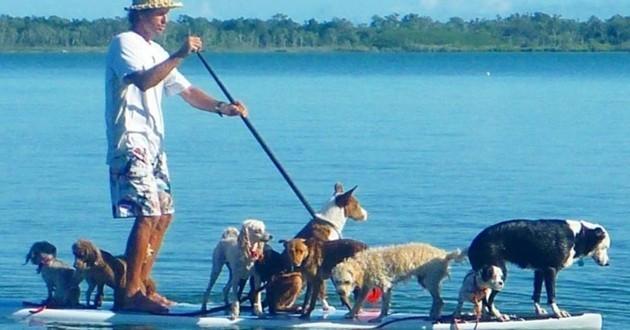 Ancien surfeur, il révolutionne le dressage canin grâce à sa discipline !