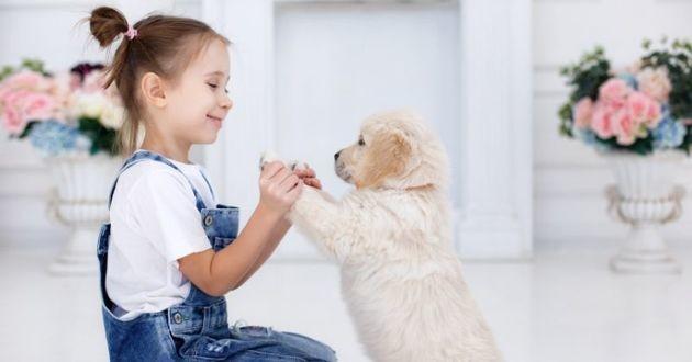 un chiot et une petite fille