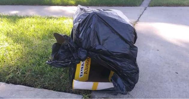 chiot sac poubelle