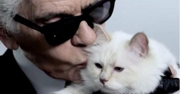 Karl Lagerfeld et sa chatte