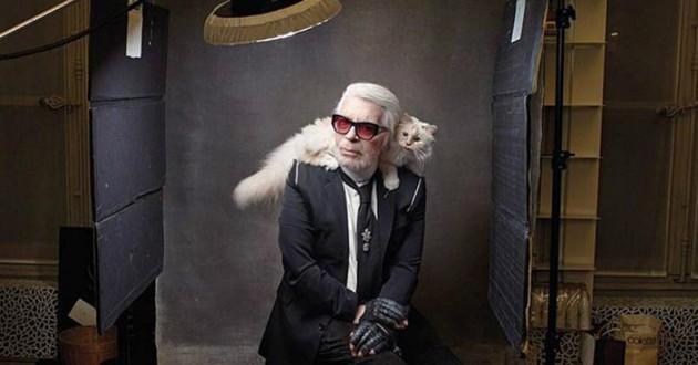 karl lagerfeld et son chat