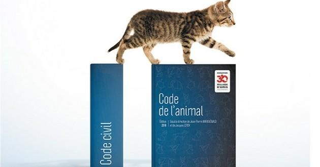 Un code juridique de l'animal publié en France, une première