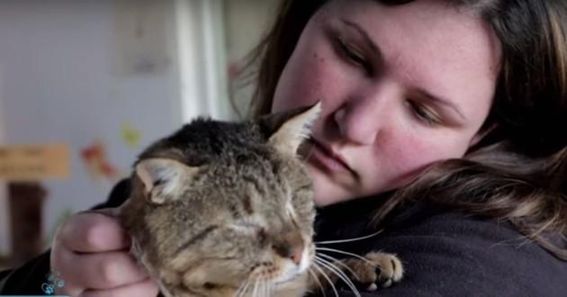 chat aveugle refuge