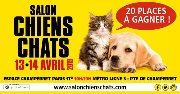 Salon Chiens Chats