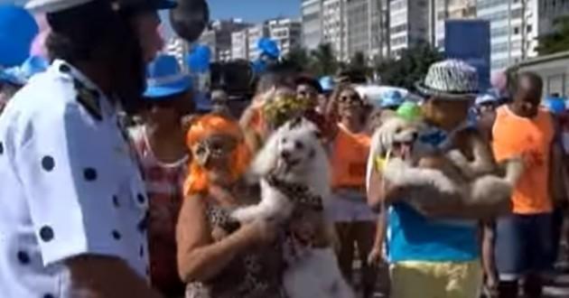 Blocao Copacabana chiens