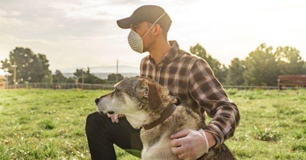 chien et maître avec un masque coronavirus