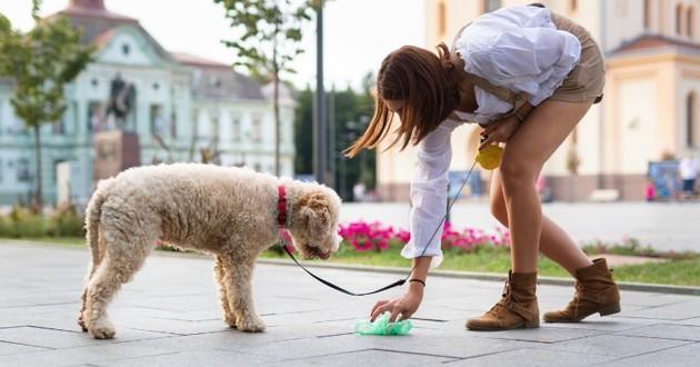 une femme qui ramasse une crotte de chien dans l'espace public