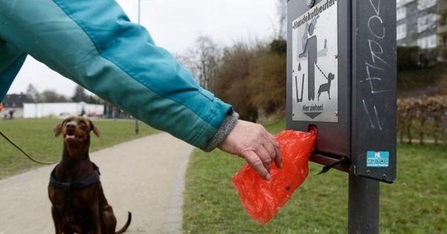 distributeur de sacs à crottes