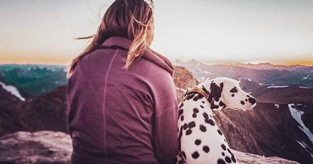 chien coeur sur la truffe avec sa maman