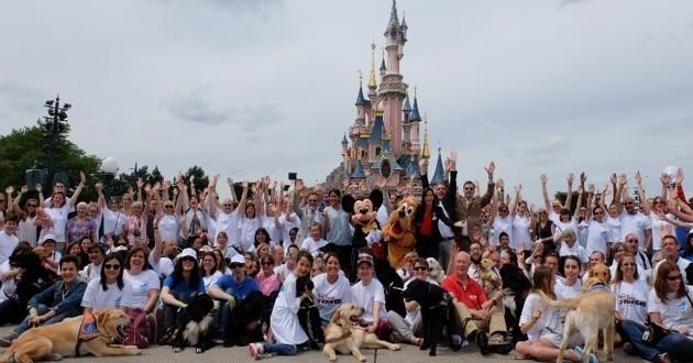 Chiens guides d'aveugles à Disneyland Paris