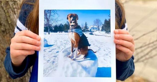 petit garçon avec une photo de chien