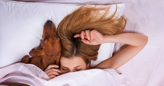 femme lit chien