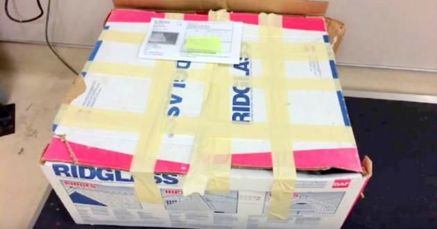 boite carton abandonnée