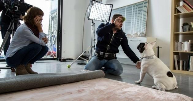 Eric Tramson éducateur canin TF1 Sept à huit