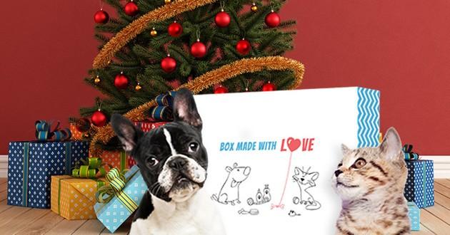 Wamiz Box Noël