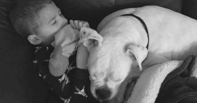 Ellie et Connor chien sourd enfant muet