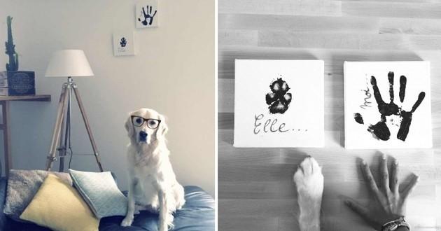empreintes chien décoration