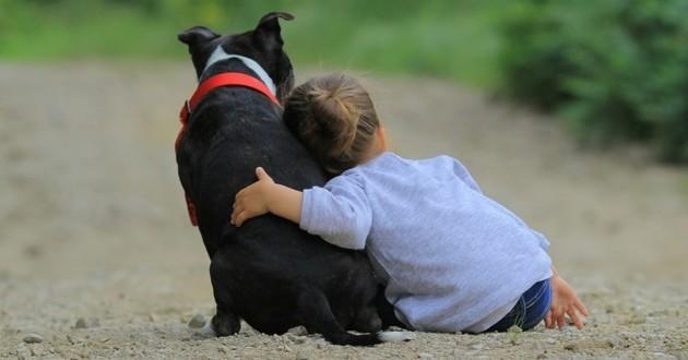 enfant école chiens