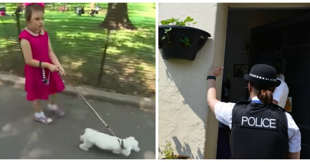 fillette qui promène son chien