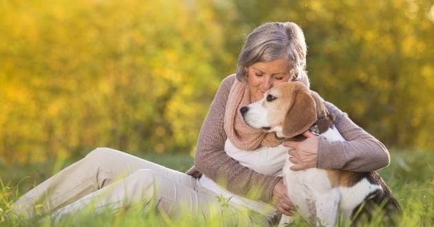 chien santé seniors