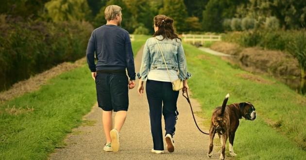 Partenaires et chien