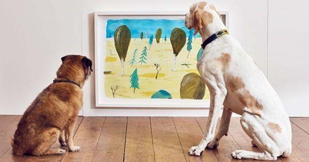 exposition pour chiens