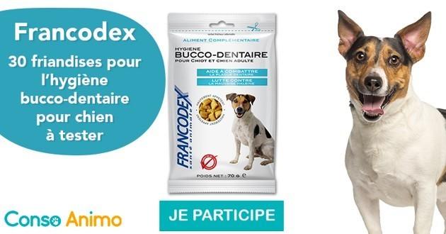 Testez les friandises bucco-dentaires Francodex pour chiens !