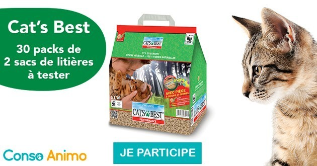 Testez la litière végétale CAT'S BEST Performance pour chats !