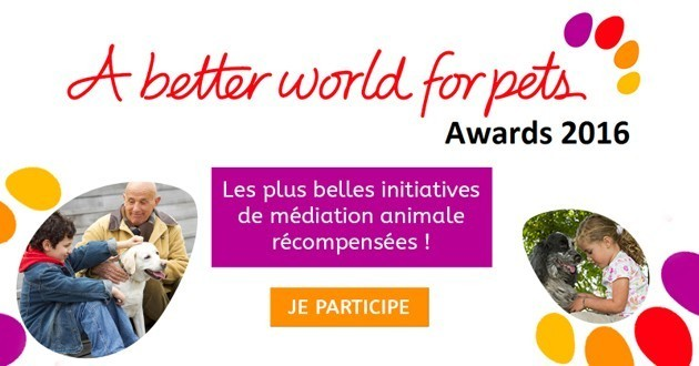 «A better world for pets» : devenez un porte-parole de la médiation animale !