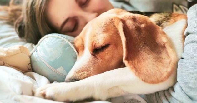 femme qui dort avec son chien