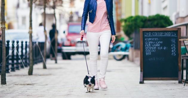 femme qui promène chien