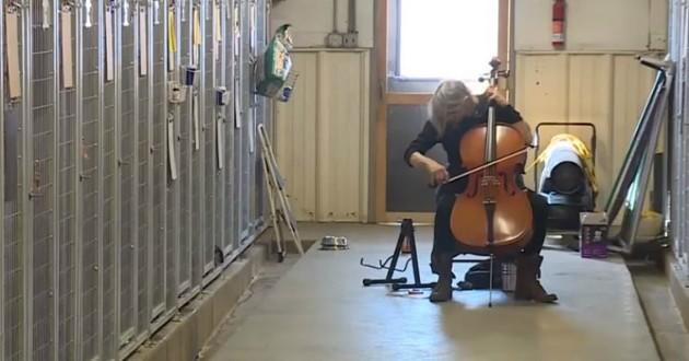 femme joue du violon dans refuge