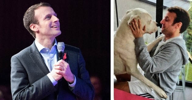 Emmanuel Macron chien Figaro dogue argentin