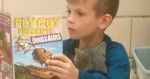 enfant lecture chat