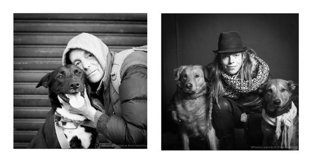 chiens et sdf