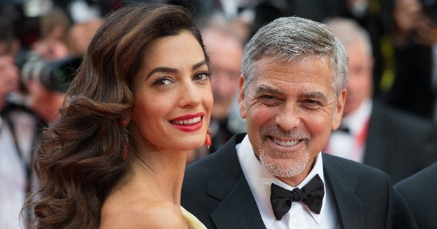 george amal clooney don chiens